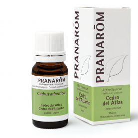 Cedro dell'Atlante - 10 ml | Pranarôm
