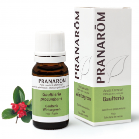 Wintergreen - 10 ml | Pranarôm