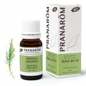 Albero del tè - 10 ml | Pranarôm