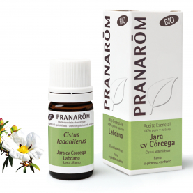 Labdano - 5 ml | Pranarôm